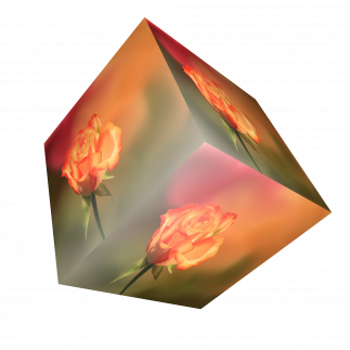 cube-2062327.png